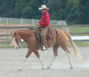 Dressage_ina_Western_Saddle